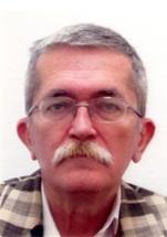 Проф. др Витормир Милановић